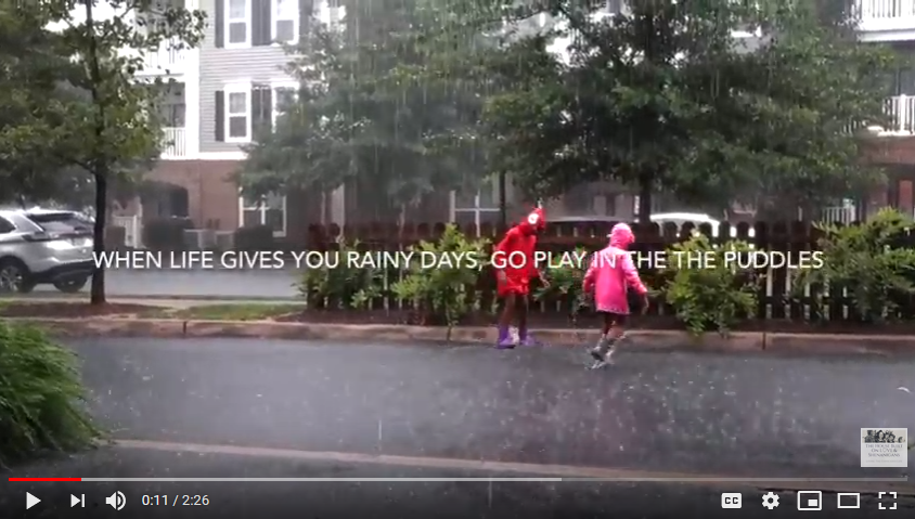 At Home with the Bostons: Some Rain Must Fall